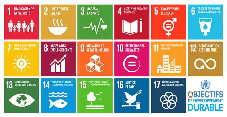 Réflexions sur le développement durable